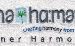 150453 Inner Harmony (Revised) 120x45